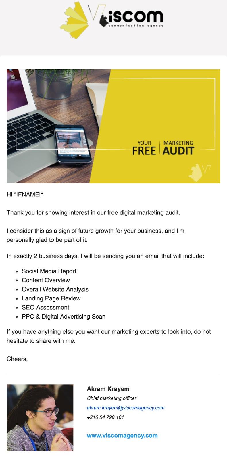 Viscom-B2B-email-campaign