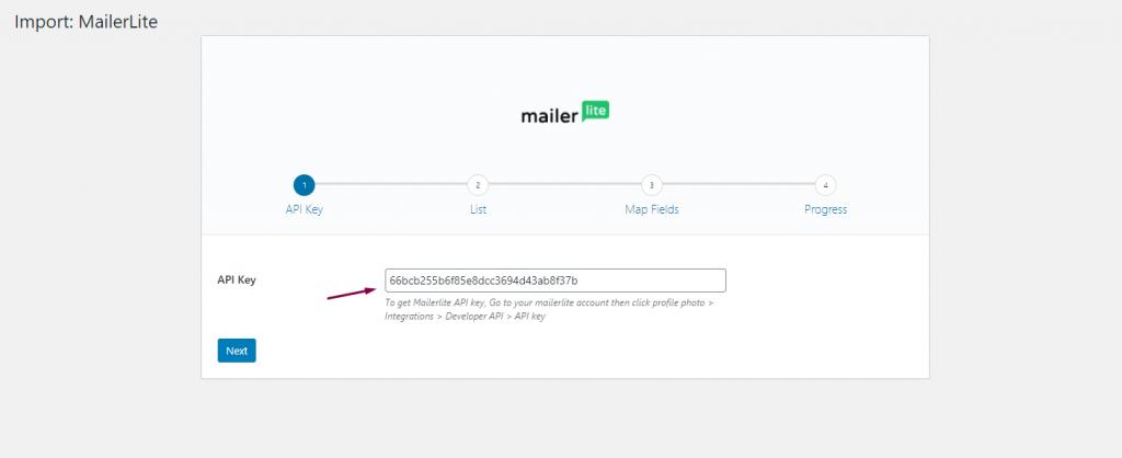 Pasting API Keys