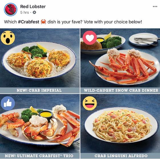 quiz-contest for social media content type