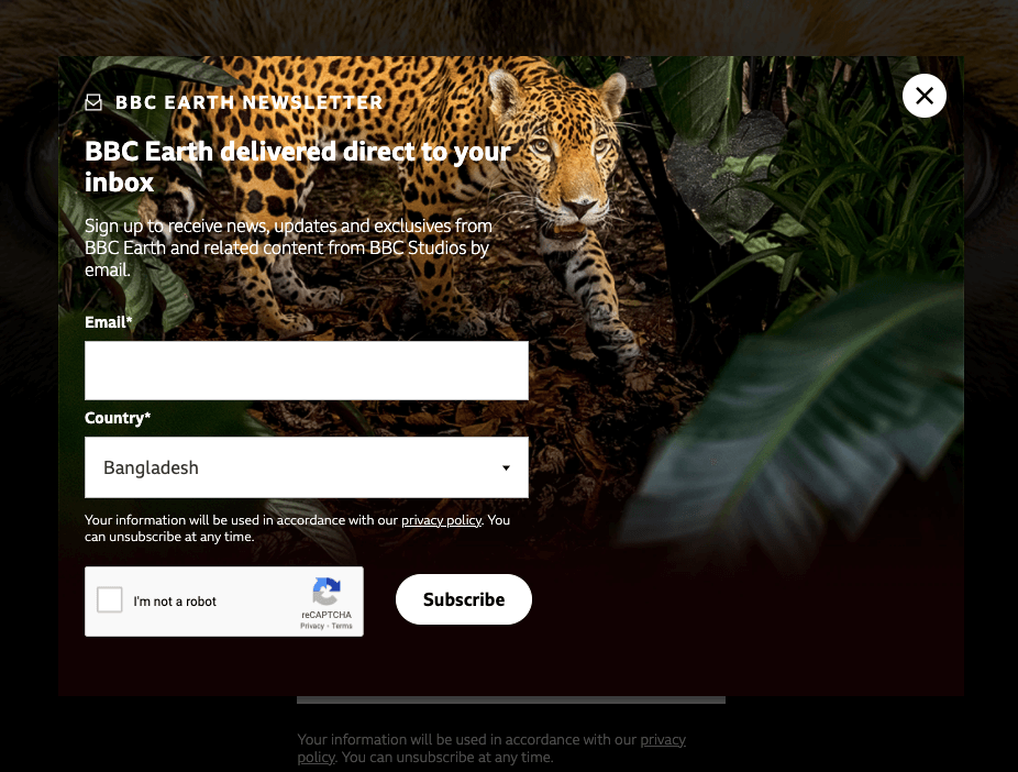 BBC earth newsletter sign up example